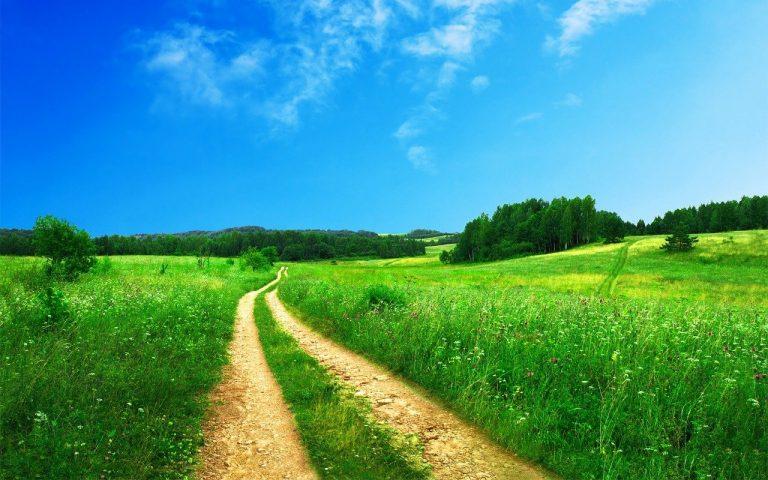Pass verde per spostarsi tra regioni
